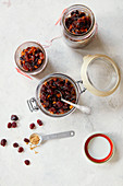Twist, ginger and cranberry mincemeat