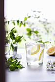 Frische Limonade mit Eiswürfeln und Zitronenscheiben