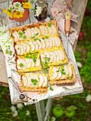 Pikanter Apfelkuchen vom Blech mit Brie auf Tisch im Garten
