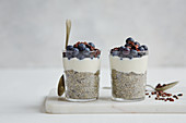 Chia puddings with coconut and blueberries