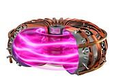 Tokamak fusion reactor, illustration