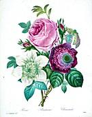 Flower bouquet, 19th century illustration