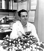 Marshall Nirenberg, American biochemist