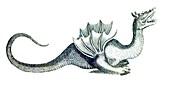 Mythological creature, 17th century illustration