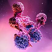 T cells attacking cancer cells, illustration
