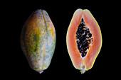 Papaya (Carica papaya) fruit