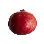 Pomegranate (Punica granatum) fruit