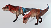 Artwork of a pair of tyrannosaurus