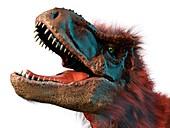 T Rex Head Study