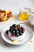 Baked camembert with red grapes and cranberries