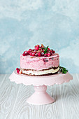 Cranberry, chocolate and ice cream cake