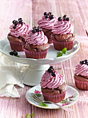 Chocolate muffins with black currant cream