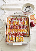 Colorful cake with peaches and round plums with custard and poppy seed filling