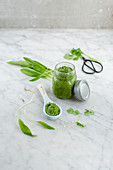 Asian wild garlic pesto