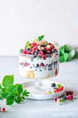 Beerenjoghurt-Kleinigkeit mit Vanilleschwamm und Joghurtcreme