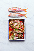 Oven cooked red mullet with red bell pepper
