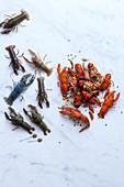 Flusskrebse, roh und zubereitet
