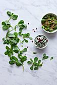 Purslane salads