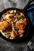 Chicken in creamy tarragon mushroom sauce