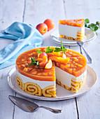 Aprikosenkuchen mit Biskuitrand und Gelee, angeschnitten