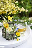 Körbchen mit Frühlingsblüten: Hornveilchen, Narzisse, Vergißmeinnicht, Maiglöckchen und Hahnenfuß