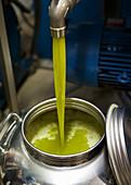 Extra Natives Olivenöl abfüllen