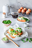 Toasted bread slices with pea cream and boiled egg