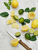 Lemons and limes whole, halved, and sliced with leaves