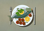 Whole fish and tomatoes on dinner plate