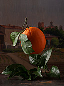 A flying orange with leaves