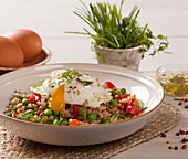 Poached egg on a grain salad with vegetables