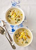 Moravian cheese soup