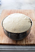 Dough for the pizza