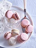 Rosa Himbeer-Vanille-Macarons