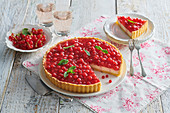 Red currant cake with custard