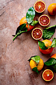 Blood oranges and clementines