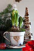 Hyacinths in a mug, behind decorated gingerbread trees