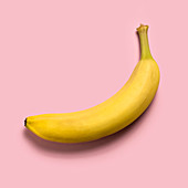 Ripe banana on pink background