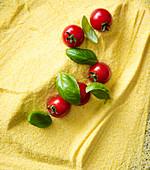Polenta, Kirschtomaten und Basilikum