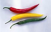 Drei Chilischoten, rot, gelb, grün