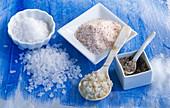Different types of salt: coarse sea salt, herbal salt, Himalayan salt, Fleur de Sel, Sel Marin de Atlantique, table salt