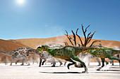 Aucasaurus dinosaurs, illustration