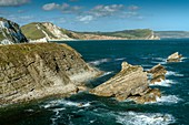 Chalk cliffs, Dorset, UK
