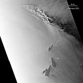 Iceberg A-68, satellite image
