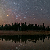 Orion and Perseid meteor