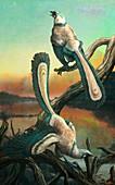 Archaeopteryx bird-like dinosaurs, illustration