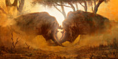 Arsinoitherium prehistoric mammals fighting, illustration