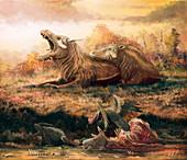 Daeodon extinct mammals, illustration
