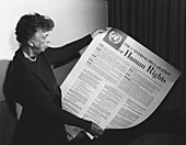 Universal Declaration of Human Rights, 1948