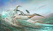 Kumimanu extinct penguins, illustration